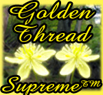 Golden Thread Supreme